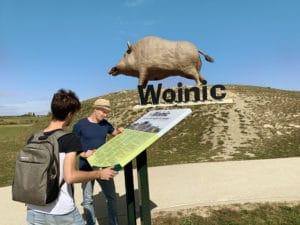 Prise d'information sur le colosse des Ardennes au pied de Woinic