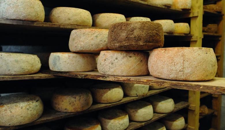 photographie des Fromages terroir et gastronomie