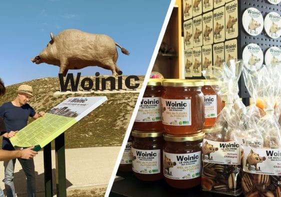 Montage photo vue et alimentation Woinic symbole et emblème des Ardennes