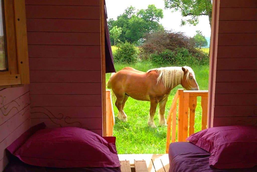 Présentation de l'hébergement chambre et extérieur avec cheval de la roulotte au rythme d'Arduinna