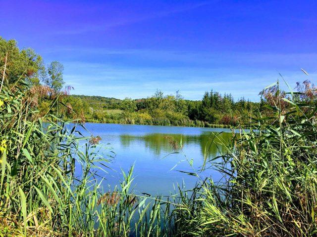 Image de l'étang de Gironval